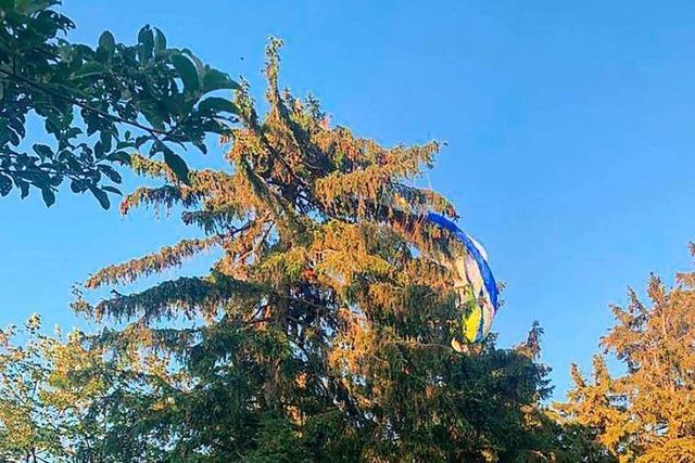 Gleitschirmflieger landet im Baum auf dem Hochblauen