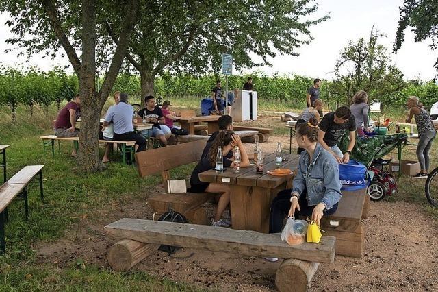Jugendliche pflegen Grillplatz