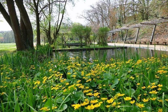 Der Dreiländergarten ist nach dem Mittelalterfestival in tadellosem Zustand