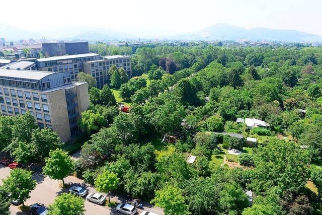 Rat beschließt Kleineschholz und Europaviertel – und macht Vorgaben