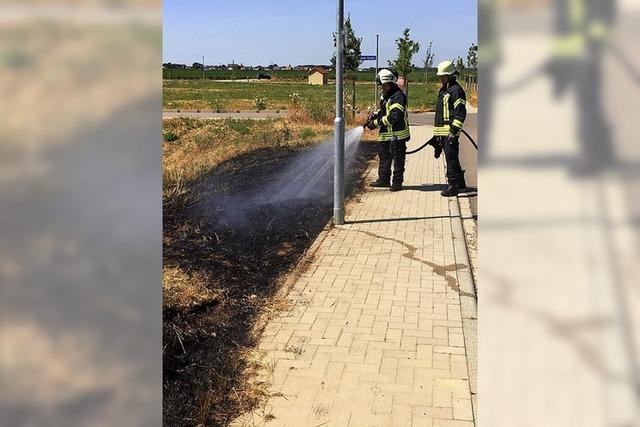 Zigarettenkippe löst Brand aus