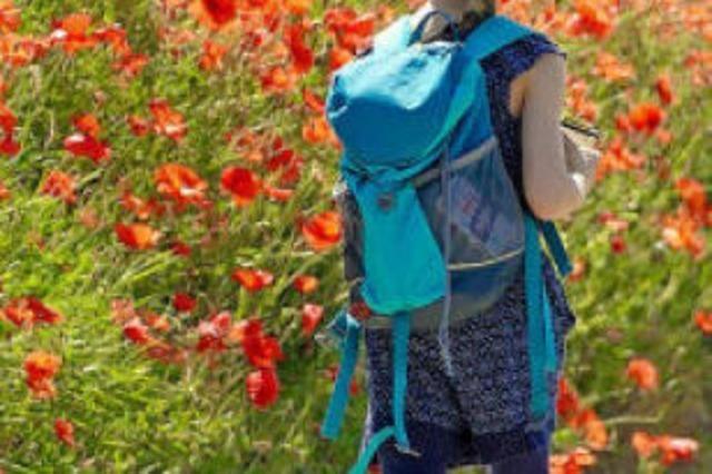 Wandern nach Gefühl: Mit Kindern auf Tour am Kaiserstuhl