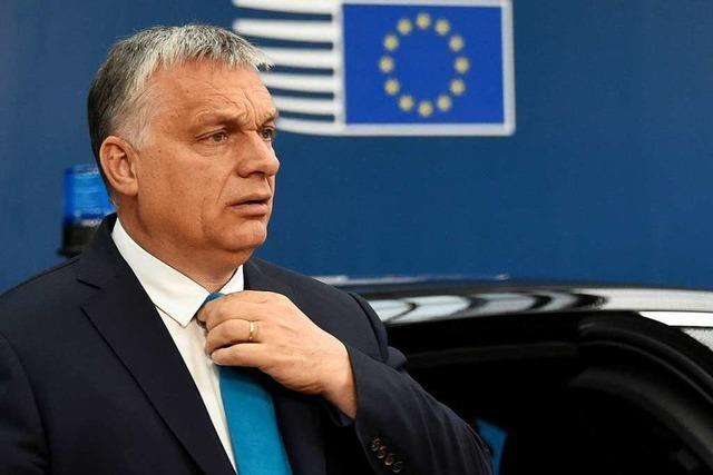 Orban und die Puszta-Nutella