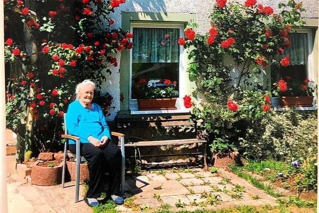 Eine 92-Jährige pflegt seit 46 Jahren einen Rosenstrauch
