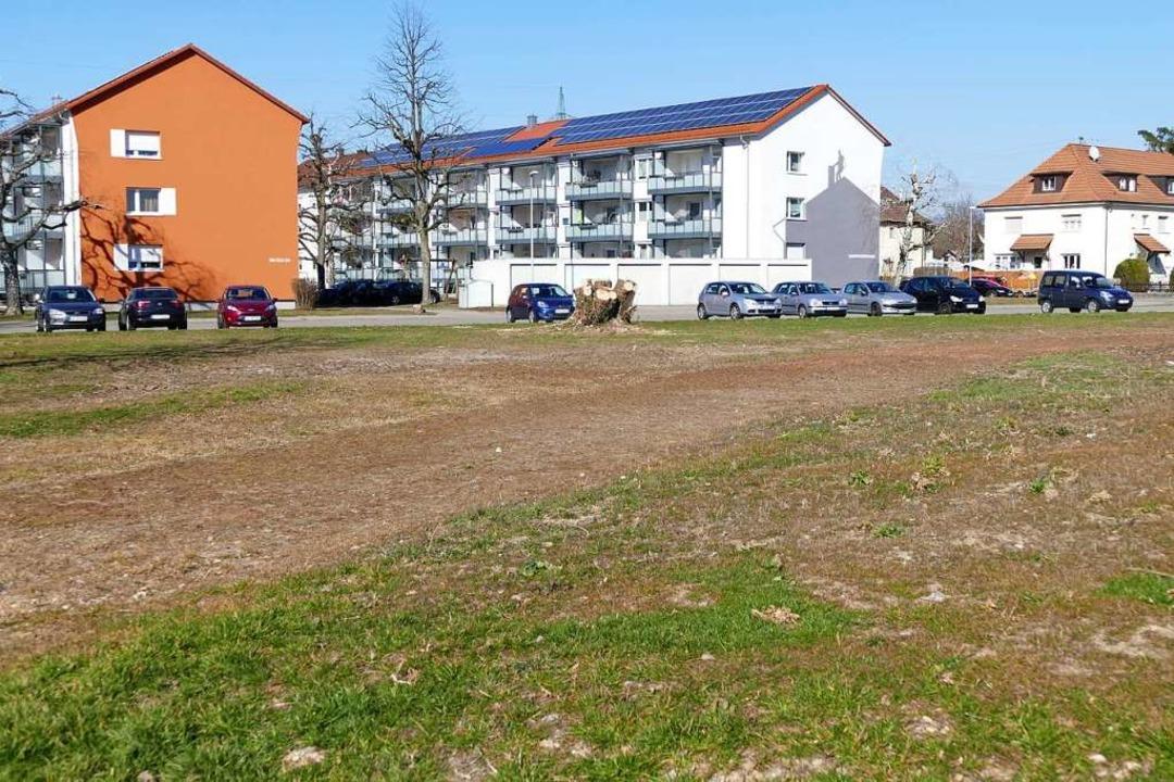 Die  Wohnbaufläche im Bebauungsplan Josefstraße wird auf 40 Einheiten begrenzt.    Foto: Ingrid Böhm-Jacob