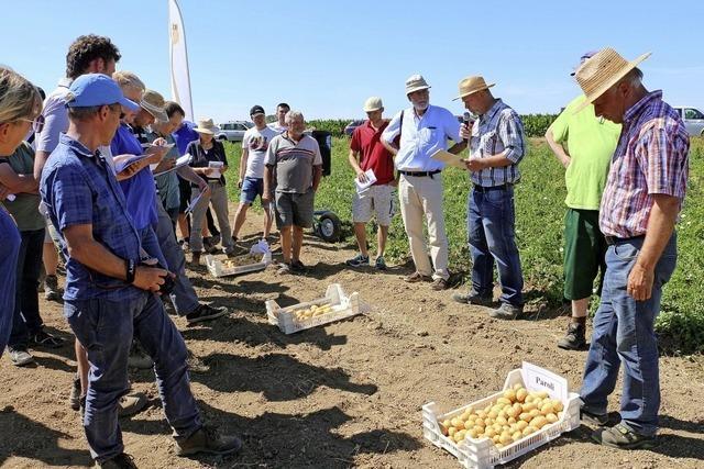 Lea begeistert die Kartoffelbauern