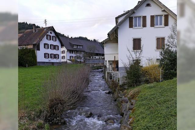 Nicht nur Schwarzwaldidylle!