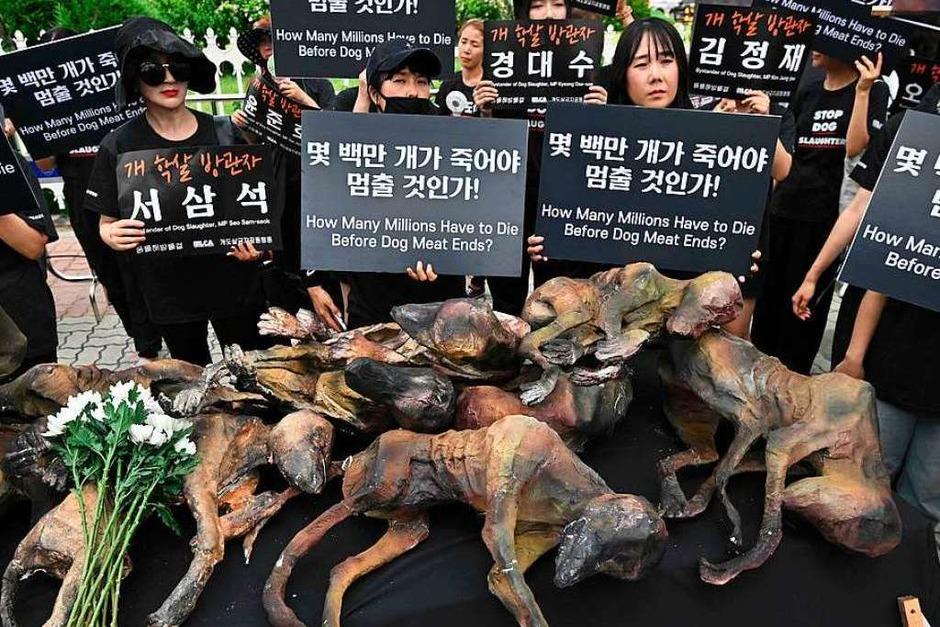 Tierschutzaktivisten versammeln sich vor der Nationalversammlung in Seoul, um den Verzehr von Hundefleisch zu stoppen. Dabei präsentieren sie Attrappen, die wie tote Hunde aussehen. (Foto: JUNG YEON-JE (AFP))