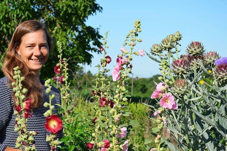Innerhalb von gut zwei Jahren hat Staudengärtnerin Carolin Urban in Leutersberg mit ihrem Demeter-Kräutergarten nicht nur ein kleines Unternehmen, sondern ein Paradies für Wildbienen, Insekten und andere Tiere geschaffen. (Foto: Gabriele Hennicke)