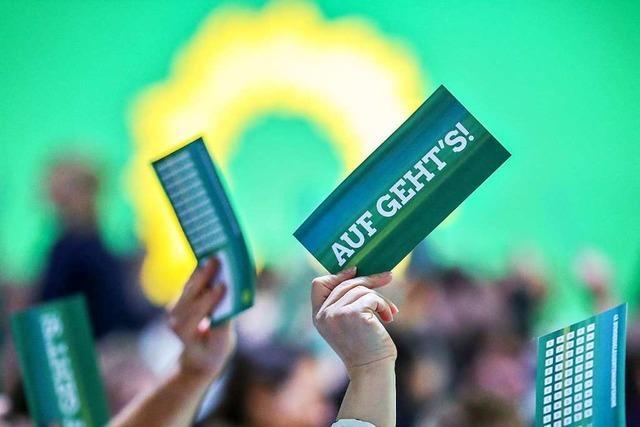 Die Grünen wollen bis zum Herbst einen Ortsverband auf die Beine stellen