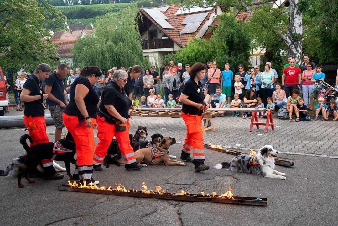 Bei der Rettungsstaffel Oberrhein komm...ine Angst haben, auch nicht vor Feuer.    Foto: Volker Münch