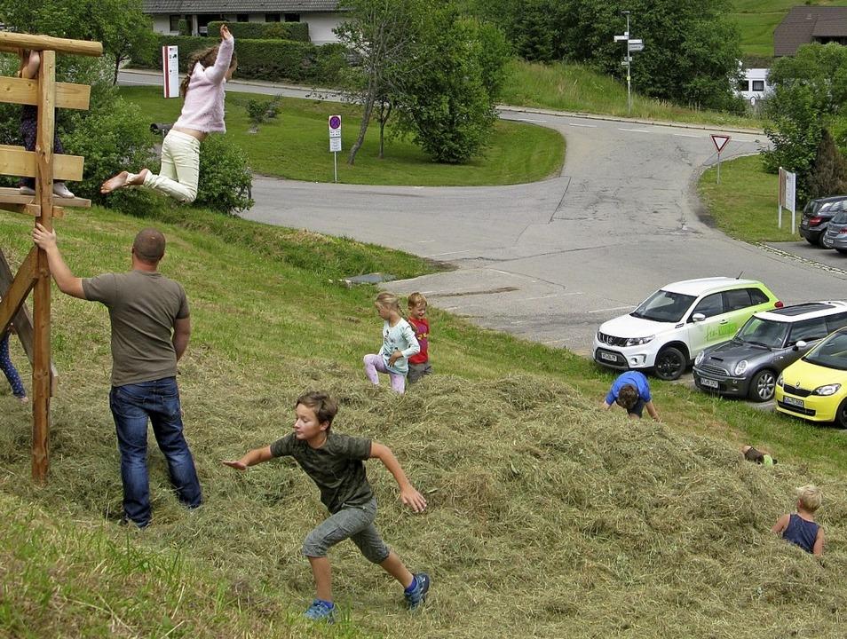 Auf zum nächsten Sprung – die Ki...ug in den riesigen Heuhaufen springen.  | Foto: Ulrike Spiegelhalter