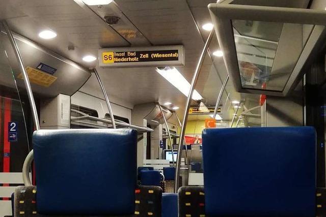 23-Jähriger soll in S-Bahn in Richtung Schopfheim randaliert haben