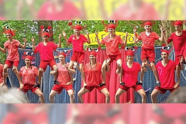 Kinder- und Jugendzirkus Faustino in Staufen