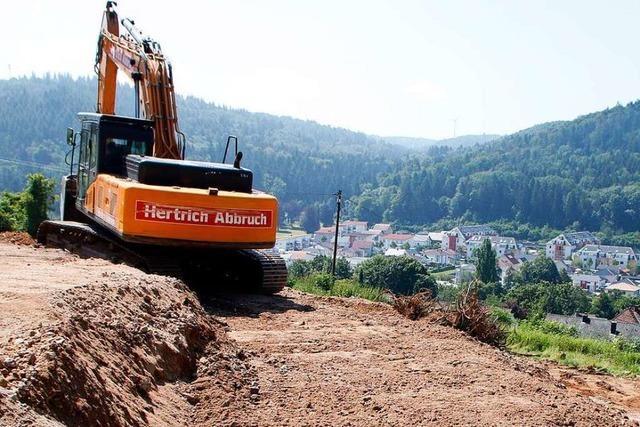 Der Altenberg, die Petition und die Folgen