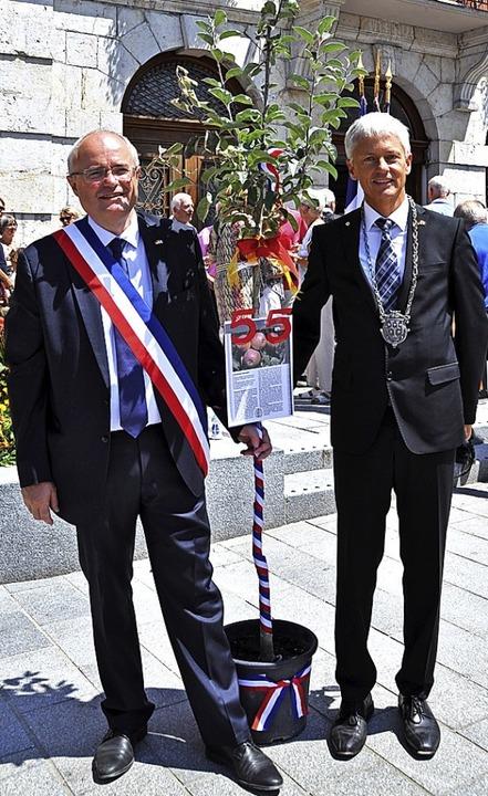 Staufens Bürgermeister Michael Benitz ...i als Gastgeschenk ein  Apfelbäumchen.  | Foto: Rainer Ruther