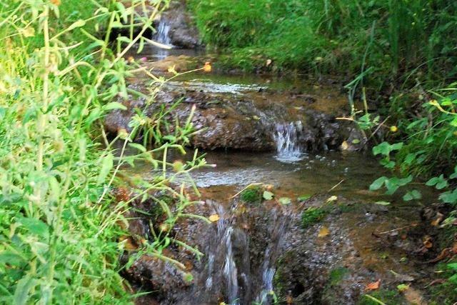 In Inzlingen können Bäche bei Starkregen Ströme werden
