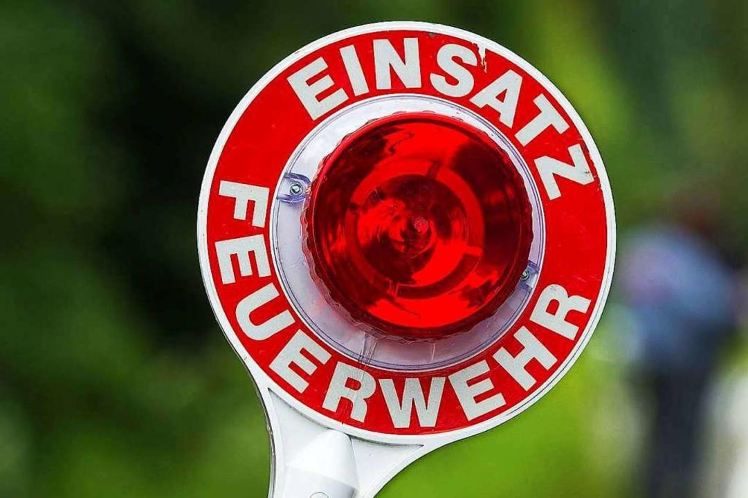 Noch rechtzeitig kam die Feuerwehr in Heitersheim.  | Foto: Armin Weigel