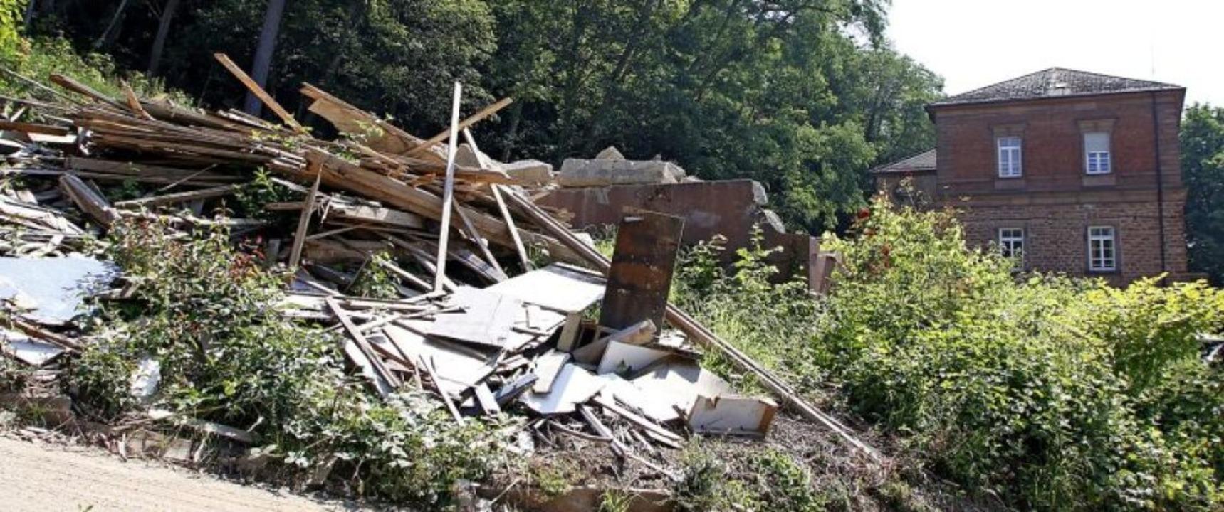 Das Baugebiet am Altenberg bleibt umstritten.   | Foto: Heidi Fößel