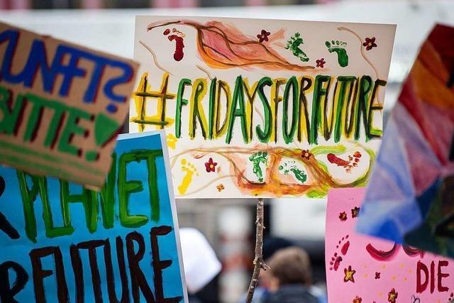 Landesregierung will Fridays for Future nicht mehr von oben herab begegnen