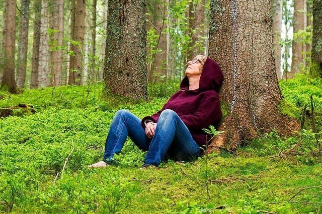 Eintauchen ins Grün: Waldbaden im Forst nahe des Schluchsees