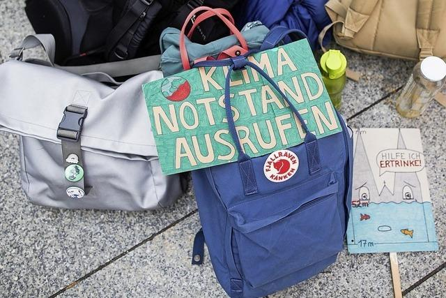 Klimanotstand Thema bei den Grünen
