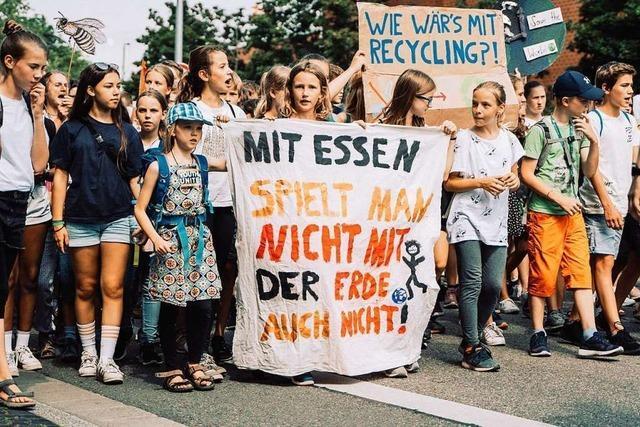 Wie war's bei … der Fridays-for-Future-Demo in Freiburg?