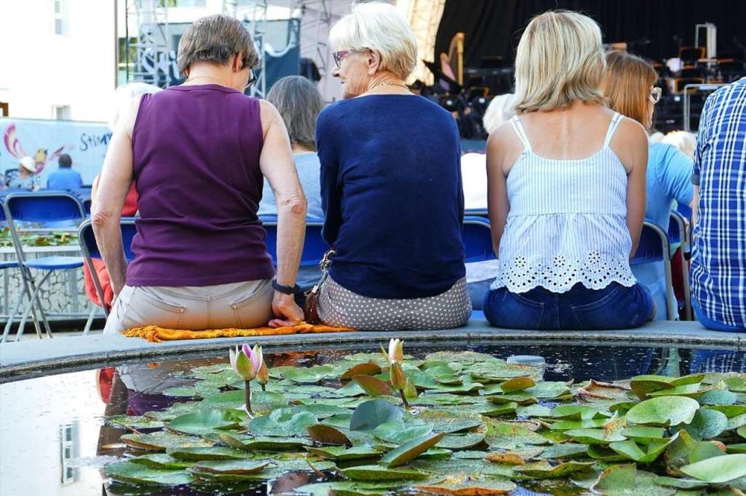 Sitzplätze am Seerosenteich im Schlosspark in Binningen.  | Foto: Martina David-Wenk