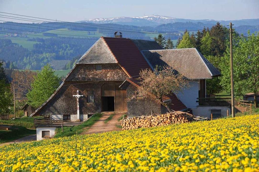 Schwarzwaldhof bei At. Märgen  | Foto: Tanja Bury