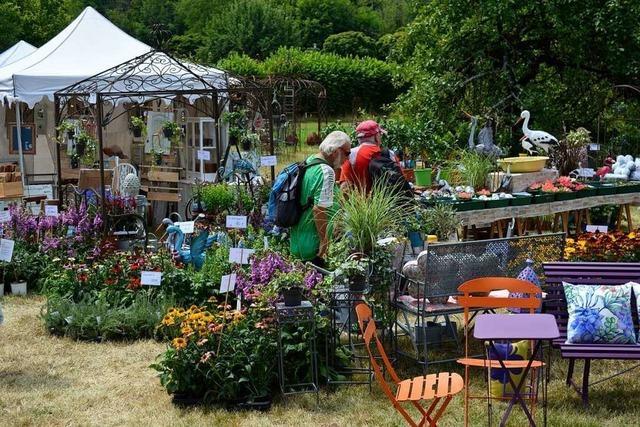 Diga im Park von Schloss Beuggen macht große Lust aufs Gärtnern