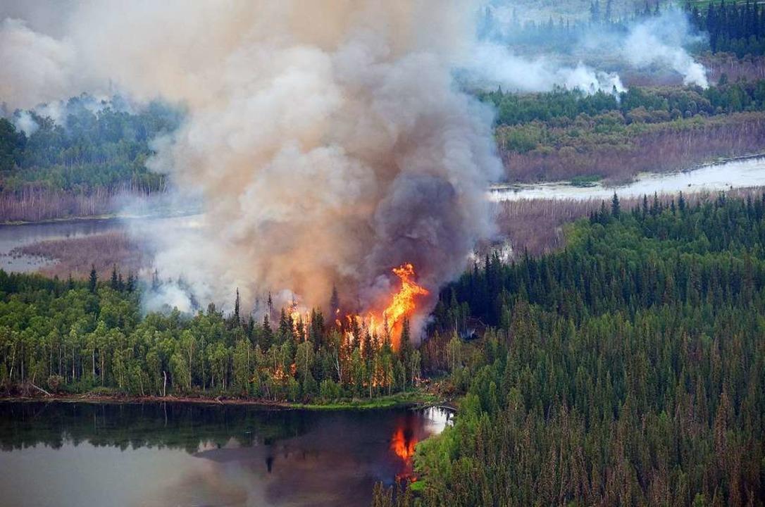 Luftaufnahmen von einem Brand in der Nähe des Berges Frozen Calf  | Foto: Sam Harrel/Alaska Interagency Incident Management Team