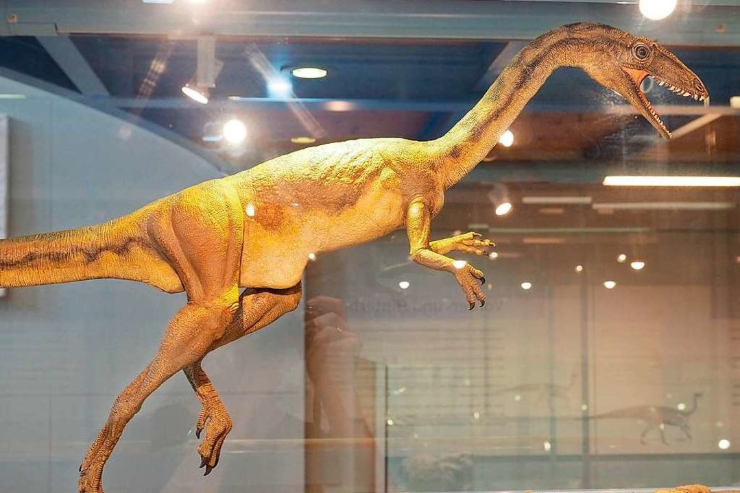 Modell des lediglich 2,5 Meter langen ...en, soll demnächst  nachgebaut werden.  | Foto: Hans Christof Wagner