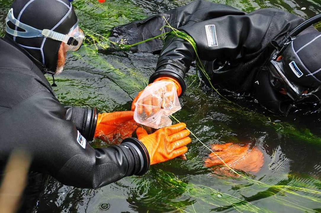 Taucher der Wasserschutzpolizei suchen...n – sie wurde aber nie gefunden.  | Foto: Helmut Seller