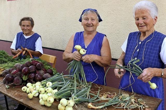 Gemüsewaschen mit Betonmischer und Bettrost
