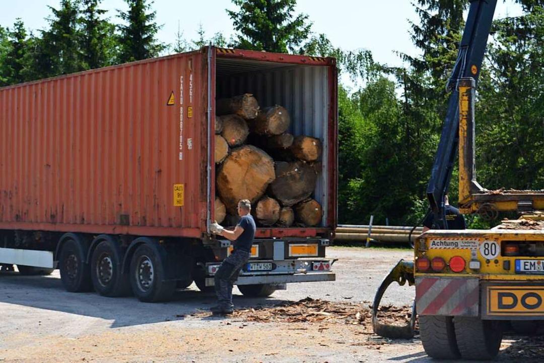 Rund 25 Festmeter Fichtenrundholz passen in den Übersee-Container.  | Foto: Arwen Stock