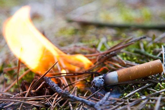 Die Waldbrandgefahr in Freiburg ist weiterhin sehr hoch