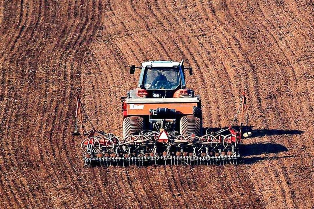 Landwirte   setzen sich als Abgeordnete im Bundestag  für ihre  Belange ein.      Foto: Jan Woitas