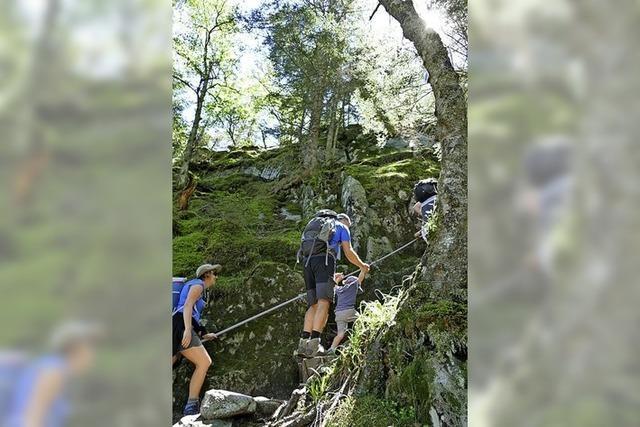 Vorsicht! Was den Felsenpfad im Elsass so anspruchsvoll und wunderschön macht