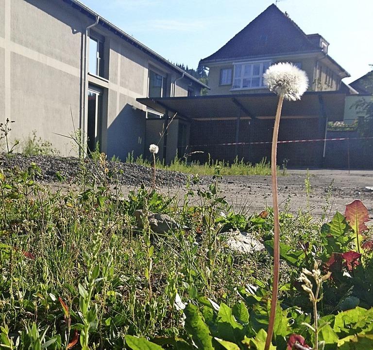 Die Fläche rund um das sanierte Willi-...-Gerbert-Schule soll gestaltet werden.    Foto: Sebastian Barthmes