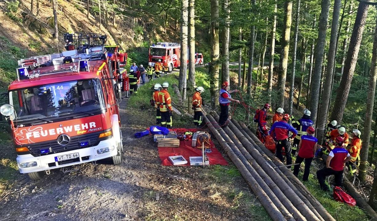 Die Feuerwehren aus Herrischried und T... Todtmoos bei einer gemeinsamen Übung.  | Foto: Bergwacht Todtmoos