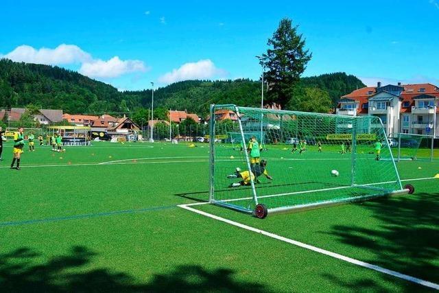 Waldkirch hat kein Mikroplastikproblem auf den Kunstrasenplätzen