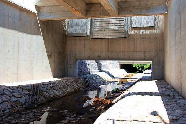 Das Regenrückhaltebecken Dietenbach ist ausgebaut und saniert
