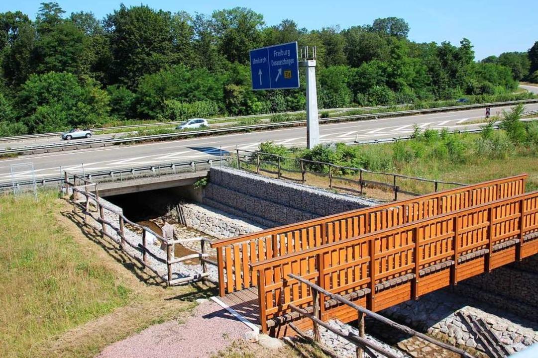 Die Anlage zum Hochwasserschutz liegt ...t, sollen später Bahngleise verlaufen.  | Foto: Mario Schöneberg