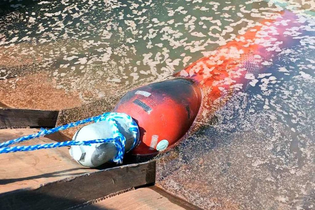 Die Acetylengasflasche wurde von der F...Wasser gefüllten Container  abgekühlt.  | Foto: Feuerwehr Gottenheim