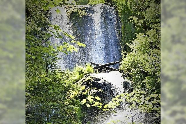 Fluchtpunkt. Cascades de Tendon im Elsass