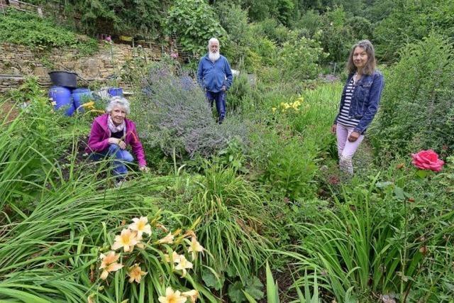 Gärtner fürchten am Hirzberg um ihre Kleingärten, da das Areal im Landschaftsschutzgebiet liegt