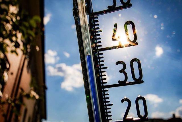 Der Kampf gegen den Klimawandel verlangt einen kühlen Kopf