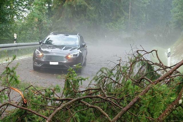 Starkregen, Sturm und Hagel sorgen für Großeinsatz der Feuerwehr