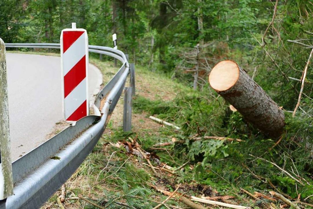 Noch am Freitagabend räumten die Einsa...lang der Straße nach Ebnet beschädigt.  | Foto: Juliane Kühnemund