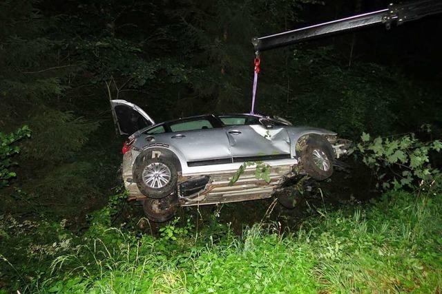 Fuchs sorgt für Totalschaden